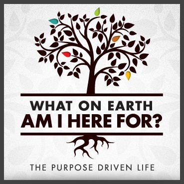 purpose-driven-life-3-cropped-pict