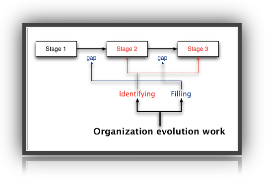 organization evolution stages